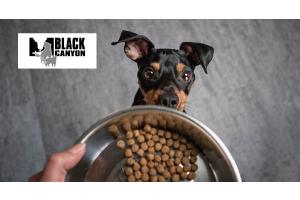 Black Canyon – Ohne Kompromisse artgerecht