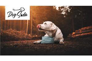 Dog Soda – Der Vital-Booster im Trinknapf