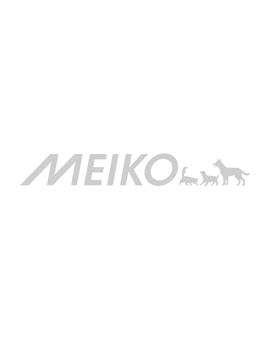 Hundepool in Pfotenform blau