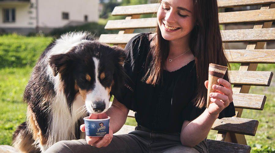 Hundeglacé & Zubehör