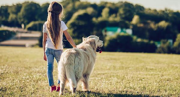 Kinderwunsch: «Mami, ich will einen Hund»