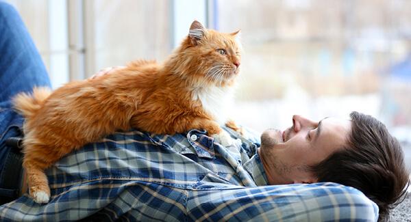 Zoonosen – zwischen Mensch und Tier übertragbare Krankheiten